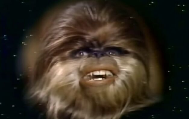 star wars holiday special wookiee child face
