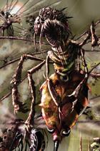 Xothic Blood Locust
