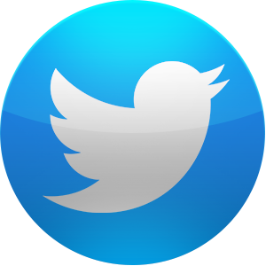 File:Twitter300.png