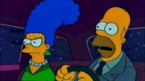 Homer Simpson's U.S.A