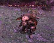 Burstrox Powderpate