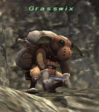 Grasswix