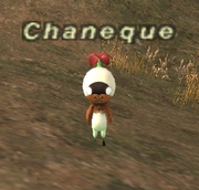 Chaneque1