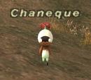 Chaneque