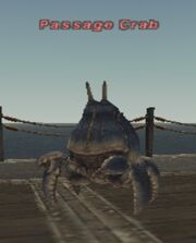 Passage Crab
