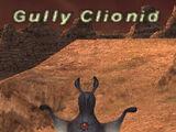 Gully Clionid