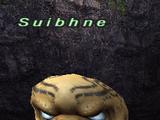 Suibhne
