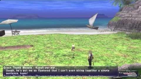 «FFXI-Movie» 0849 - Coastal Chaos