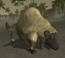 Brutal Sheep
