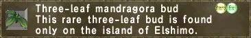 Three-leaf mandragora bud