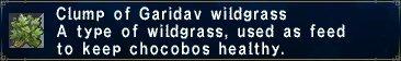 Garidavwildgrass