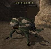 Helm Beetle