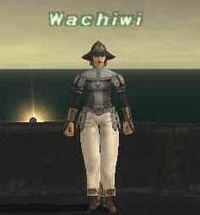 Wachiwi