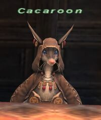 Cacaroon
