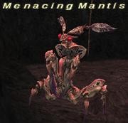 Menacing Mantis