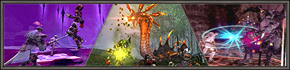 Early Autumn Bounty Campaign