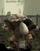 Goblin Doyen
