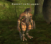 Mamool Ja Strapper