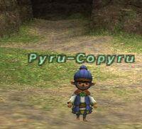 Pyru-Copyru