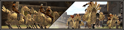 Message About Chocobo Racing Posted!