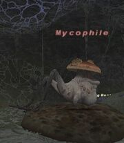 Mycophile