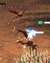 Treble Noctules