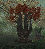 Colorful Treant