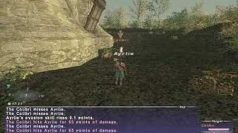 FFXI Thief Evasion Skillup - How To