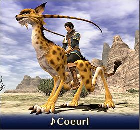 Coeurl 500px