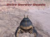 Wake Warder Wanda