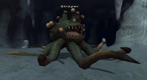 Stroper