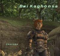 BwiKaghonsa