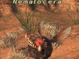 Nematocera