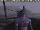 Merrow Icedancer