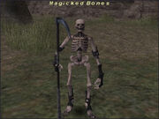 Magicked-Bones