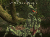 Molted Mantis