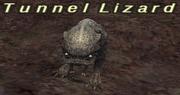 Tunnel Lizard