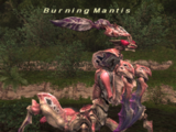 Burning Mantis
