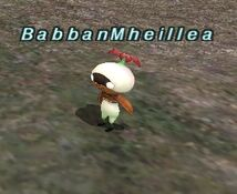 Trust Babban