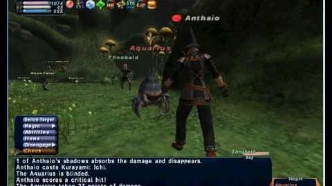 Ninja vs Aquarius (Duo with a level 70 npc adventuring fellow)