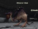 Skewer Sam