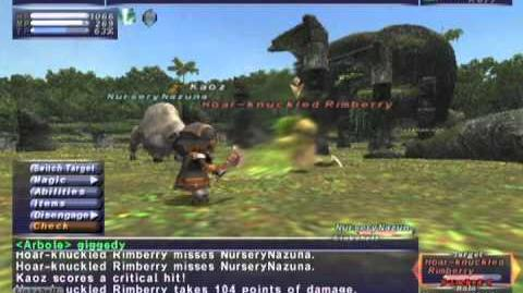 FFXI NM Saga 249 Hoar Knuckled Rimberry vs BST Full Battle