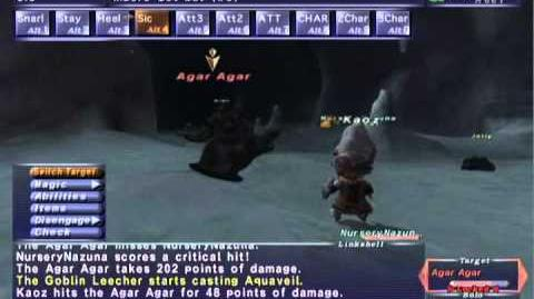 FFXI NM Saga 337 Agar Agar vs BST Full Battle