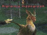 Migratory Hippogryph
