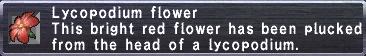 Lycopodium Flower