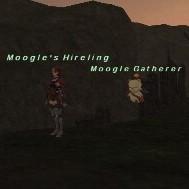 Moogle Gatherer