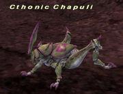 Cthonic Chapuli