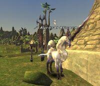 Auroral Alicorn