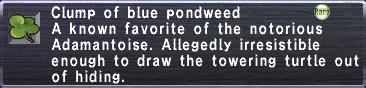 Blue Pondweed