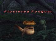 Flustered funguar